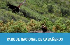 47 parque nacional de cabaneros